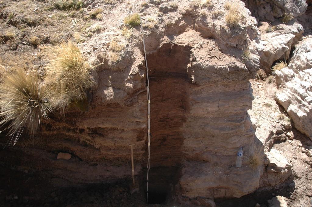 Torfprofil im Llamoca-Moor